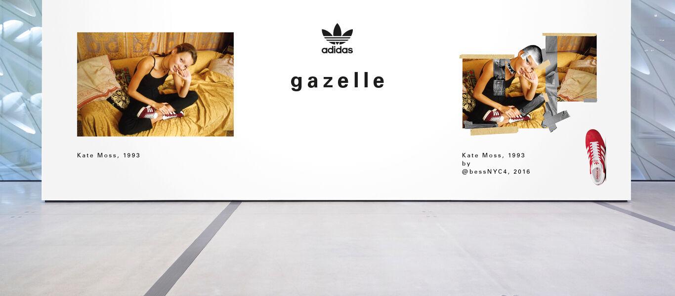 Gazelle Rose Indien