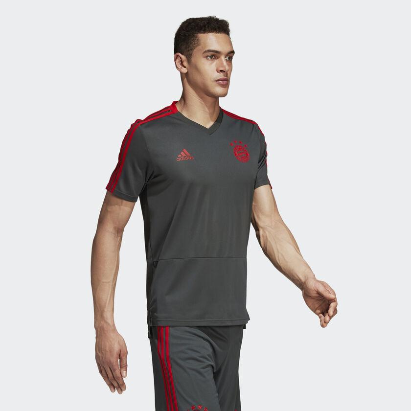 72b3a8fe29 adidas Camisola de Treino FC Bayern München - Cinzento